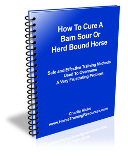 Barn Sour Herd Bound Horse