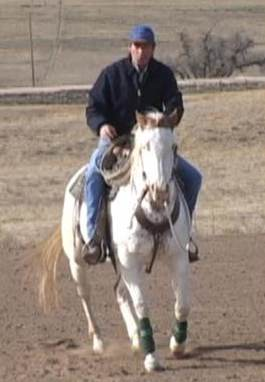Horseback Riding - Learn To Rein, Turn and Bend