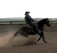 How To Teach Your Horse Sliding Stops and Spins