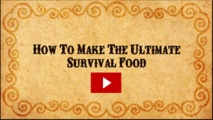 lost ways survival book pdf