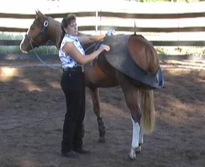 Diana Quintana training a horse